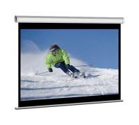 Экран CACTUS TriExpert CS-PSTE-200x200-BK, 200х200 см, напольный черный